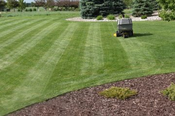 Alliance Lawn Care Service Mowing
